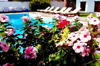 elli-hotel-on-skopelos-island